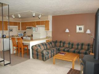 312 Orofino By Straight Creek - Dillon vacation rentals