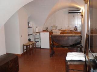 Charming appartment in old florentine tower - Tuscany vacation rentals