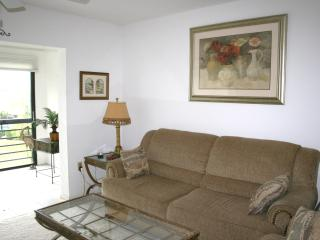 ENJOY RESORT LIVING  at the - Nokomis vacation rentals