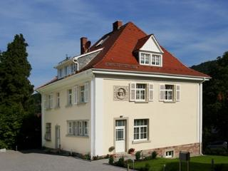 LLAG Luxury Vacation Apartment in Baden Baden - 1023 sqft, quiet, central, exclusive (# 3242) - Baden-Baden vacation rentals