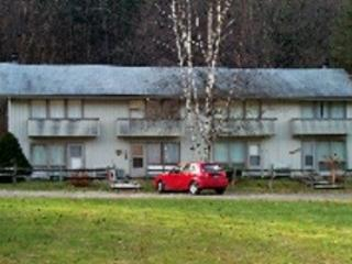 Valley Park Condo D1 - Two bedroom One bathroom - Very Economical!! - Image 1 - Killington - rentals