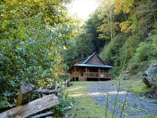 Affordable Cabin - Stay 7 days or more at $75 / Night or $1400 / Month - Fleetwood vacation rentals
