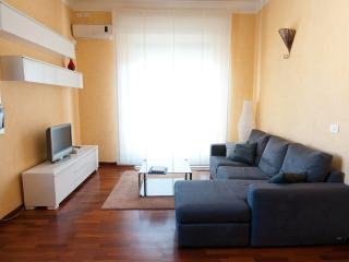 Great apartment in central Rome - AC, WIFI, SKY TV - Rome vacation rentals