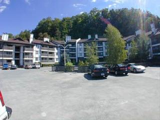 Windy Oaks Condo - Pigeon Forge vacation rentals