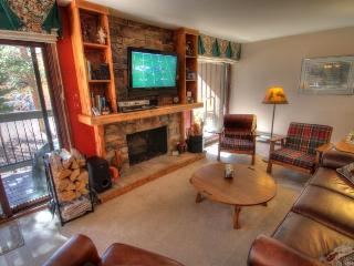 1007 Wild Irishman - West Keystone - Summit County Colorado vacation rentals