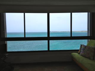 Endless summer! Spectacular Ocean View - San Juan vacation rentals