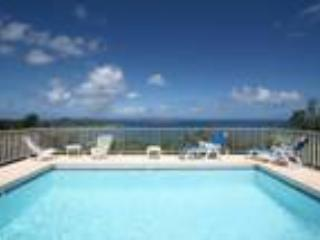 Villa Everest - Saint Barthelemy vacation rentals