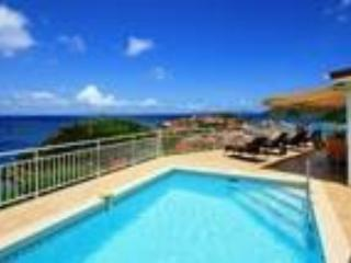Villa Grand Galet - Saint Barthelemy vacation rentals