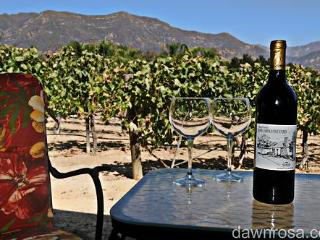 Topa Topa Vineyard - Ojai vacation rentals