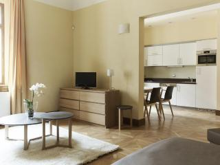 Royal Palace - Luxury Studio Old Town Residence - Prague vacation rentals