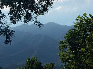 Close to Gatlinburg, Pigeon Forge and The Great Smoky Mountains - Gatlinburg vacation rentals