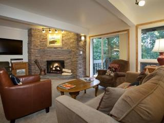 2 Bedroom Ski-In/Ski-Out in Snowmass - Snowmass vacation rentals