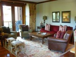 Luxury 3 Bedroom Snowmass Village Condo - Snowmass vacation rentals