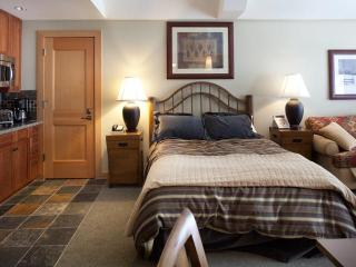 Luxury Studio in the heart of Snowmass - Snowmass vacation rentals