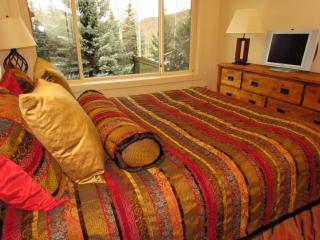 1 bedroom condo retreat at Snowmass Villas - Snowmass vacation rentals