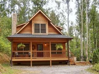 Snowy Cove - Black Mountain Vacation Rentals - Black Mountain vacation rentals