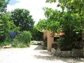 Casita in Jungle Paradise - Image 1 - Puerto Aventuras - rentals