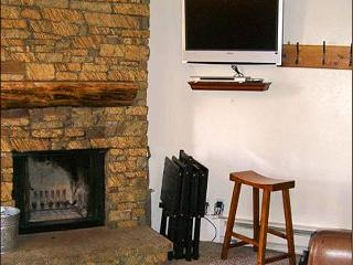 Wonderful Year-Round Vacation Condo - Perfect for Family Trips (1235) - Crested Butte vacation rentals