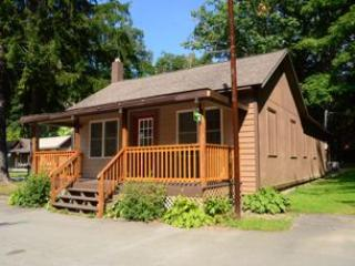 Swallow Falls Inn Cabin 4 - Oakland vacation rentals