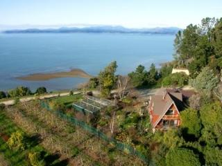 Clifftop boutique self contained country house - Nelson vacation rentals
