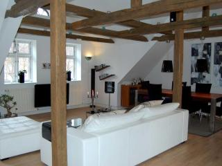 Lovly luxury apartment in Fredericia - Jutland vacation rentals