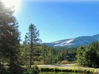 View from dining roomand front porch/common area - 3BR Townhouse in Breckenridge walk to town/slopes - Breckenridge - rentals
