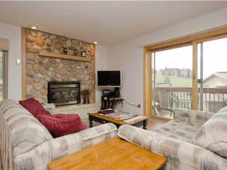 Storm Meadows I at Christie Base - SC390 - Steamboat Springs vacation rentals