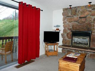 Storm Meadows East Slopeside - SE045 - Steamboat Springs vacation rentals
