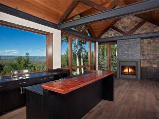 FOREST LANE CONTEMPORARY - Snowmass Village vacation rentals