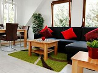 LLAG Luxury Vacation Apartment in Kenzingen - 721 sqft, comfortable, modern, luxury (# 3282) - Baden Wurttemberg vacation rentals