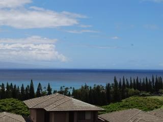 Kapalua Golf Villas  G22T8 - Kapalua vacation rentals