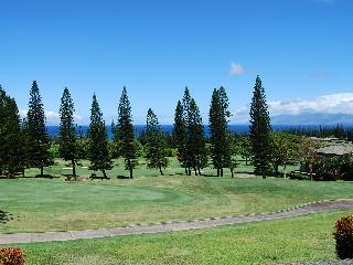 Kapalua Golf Villas  G26T5 - Kapalua vacation rentals