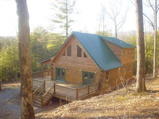 Beautiful New Log Cabin in  Blue Ridge Mountains - Image 1 - Murphy - rentals