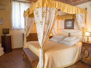 Wonderful country estate near Florence, Italy - Castellina In Chianti vacation rentals