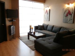 Modern Loft Apartment just 6 blocks from El Centro - Cuenca vacation rentals