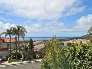 Dana Point Tri-Level Home - Dana Point vacation rentals