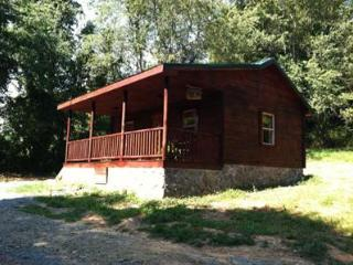 Galax VA Log Cabin - Galax vacation rentals