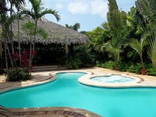 SUPER SAVINGS!!! 500 USD /NIGHT ( 1 week rental ) - La Romana vacation rentals