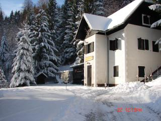 Chalet in Slovenia, Ski &Spa domestic food, wine - Dolenjske Toplice vacation rentals