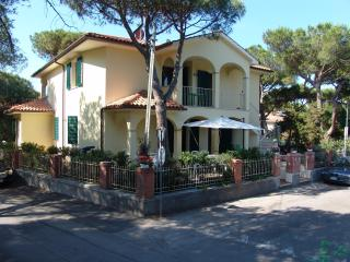 blue apartment - Marina di Castagneto Carducci vacation rentals