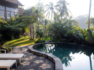 Sublime, tropical forest view villa,Ubud,4BR - Ubud vacation rentals