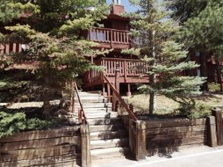 Angel Fire Chalet #6 - Angel Fire vacation rentals