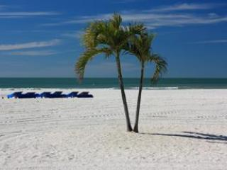 Soak Up the Warm Florida Sun - Park Shore Boutique Apartments - Saint Pete Beach - rentals