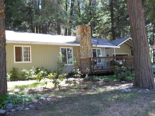 A Mountain Rose, near famous Apple Hill area(50yr celebration), wineries,Sly Park/Jenkinson Lake, seasonal snow or swimming! - Gold Country vacation rentals
