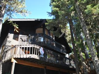 Great Blue Lodge, Government Camp OR - Government Camp vacation rentals