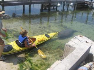 Cottage + Sailboat, Kayaks, Snorkel, Fishing, Swim - Key Largo vacation rentals