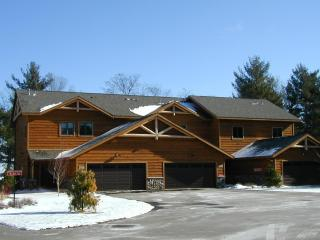 Castlemere on Castle Rock Lake, near WI Dells - Necedah vacation rentals