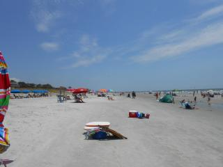 Super Fall Weather, Many Weeks Available - $700/wk - Forest Beach vacation rentals