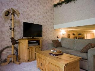 Ski Time Square - ST114 - Steamboat Springs vacation rentals