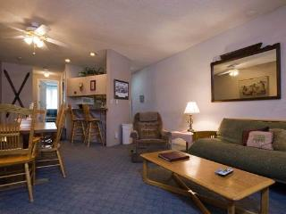 Ski Time Square - ST315 - Steamboat Springs vacation rentals